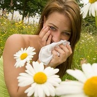 Free Allergy Medicine