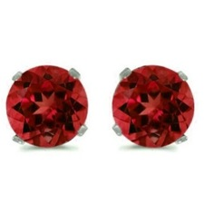 2 CTW Garnet Stud Earrings