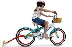 Chalk Trail Bike Attachment