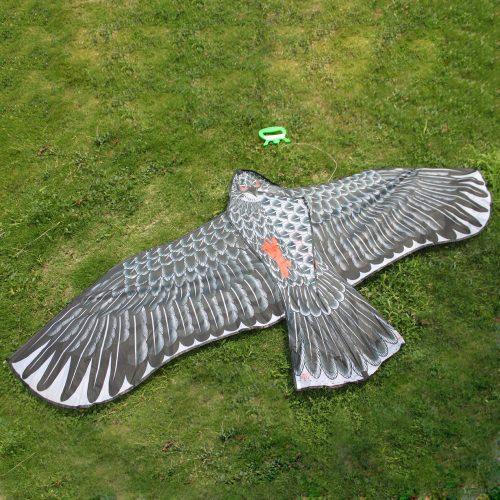 Eagle Kite : $5.02 + Free S/H