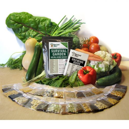 11,000 Non-GMO Seed Pack : $13.95