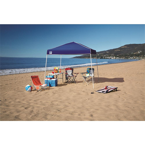 10′ x 10′ Instant Canopy : Only $39.99