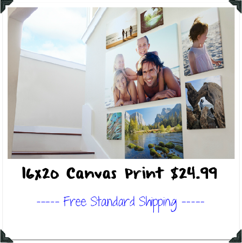 16×20 Canvas Print : $24.99 + Free S/H
