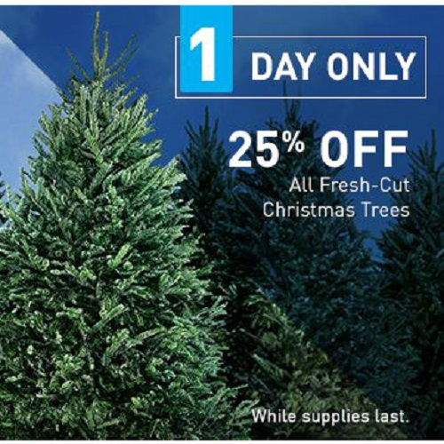 Lowe's : 25% off Fresh Cut Christmas Trees