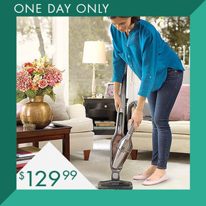 Electrolux 2-in-1 Cordless Stick Vacuum : $119.99