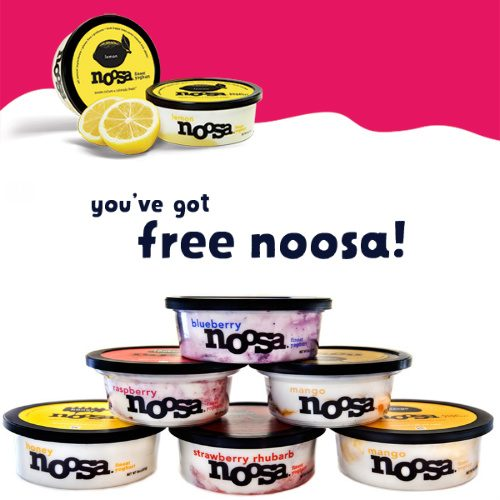 noosa : Coupon for a Free Yoghurt