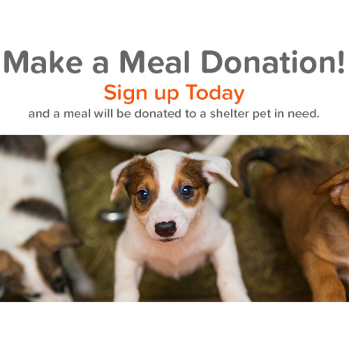Pet360 : Free Meal Donation for a Shelter Pet