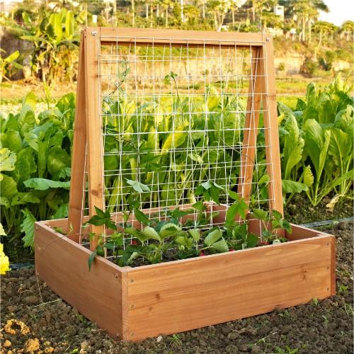 garden box with trellis