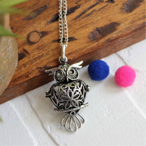 77% off Essential Oil Owl Necklace : $5.99