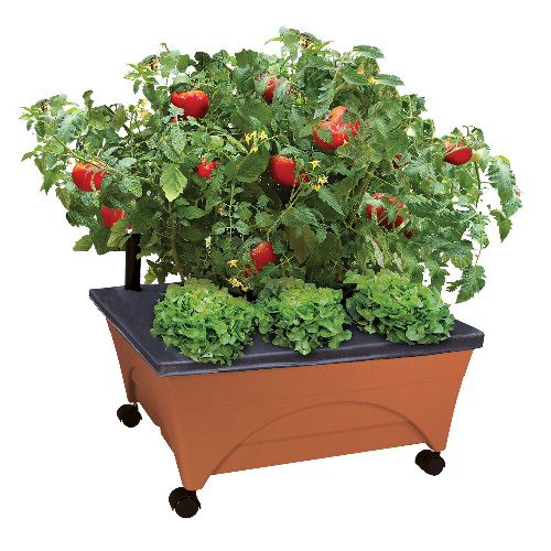 patio pickers portable raised garden box on wheels
