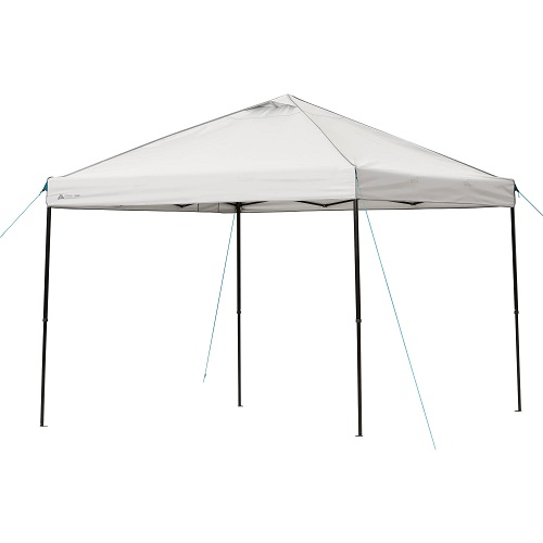 $30 off Ozark Trail 10′ x 10′ Instant Canopy : $59 + Free S/H