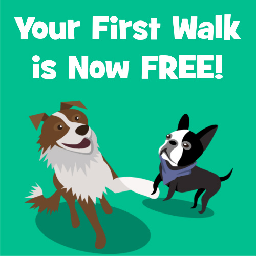 Wag Dog Walking Service : First Walk is Free!