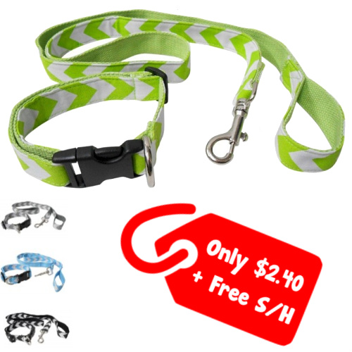 91% off Chevron Dog Leashes and Collars : $2.40 + Free S/H