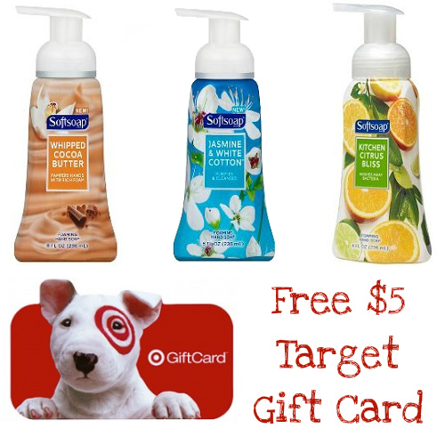 3 Bottles of Softsoap Foaming Hand Soap w/ Free $5 Target Gift Card : $5.97 + Free S/H