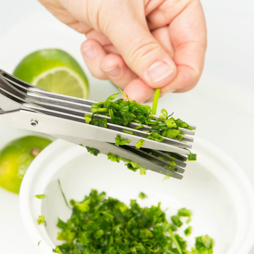 80% off Stainless Steel Herb Scissors : Only $3 + $2.50 Flat S/H