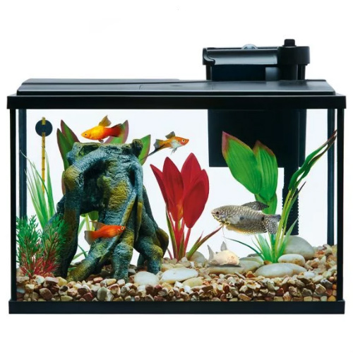 Aquariums and Fish Tanks : Up to 50% off