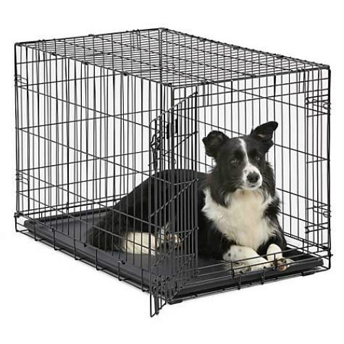 Dog Crates : Up to 74% off + Extra 10% off