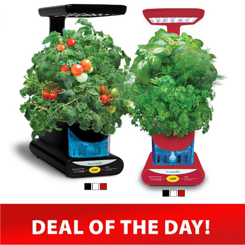 50% off Set of 2 AeroGarden Kits w/Seeds : Only $99.95 + Free S/H
