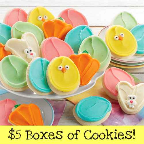 Up to 92% off Boxes of Spring Cookies : Only $5