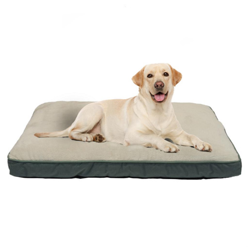 51% off Large Gusseted Pet Bed : Only $14.88