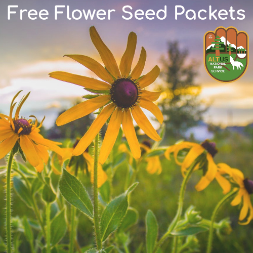 Free Flower Seed Packets