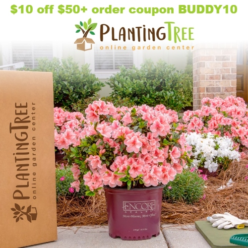 PlantingTree Coupon