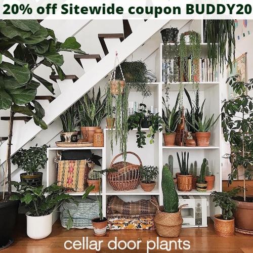 Cellar Door Plants Coupon