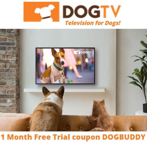 DogTV Coupon