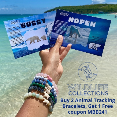 Wildlife Collections Coupon